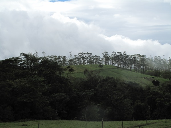 CostaRicaCloudTrees.jpg