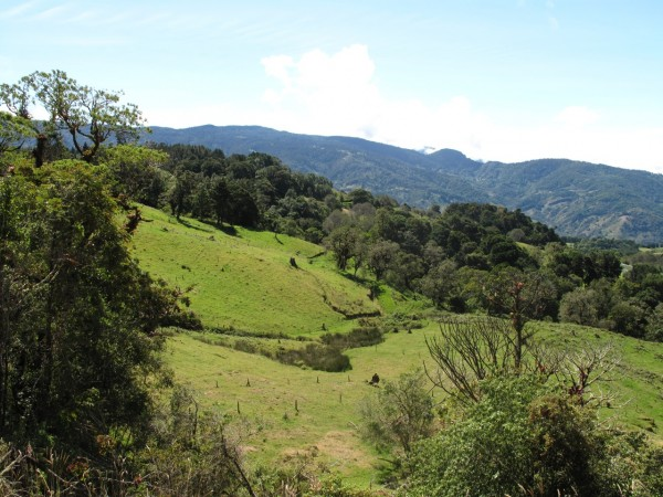 Green Hills of Costa Rica